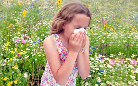 Natural Helps Through Seasonal Allergies: Herbs, Homeopathics, Supplements