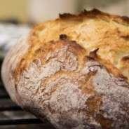 Gluten Free Diet: Fad, Fact, or Fiction?