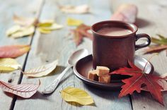 Dairy-Free Rich and Creamy Hot Cocoa