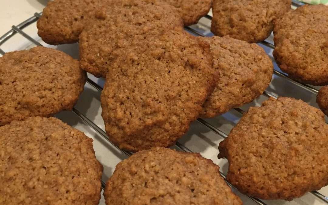 Oatmeal Tigernut Cookies – GF CF AIP